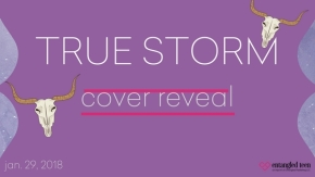 True Storm Cover Reveal