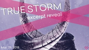 True Storm – Excerpt Reveal and Giveaway!